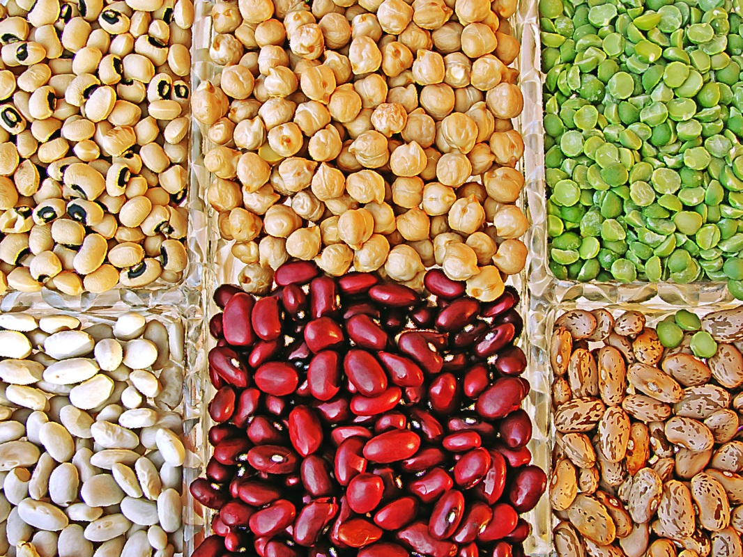 Legumes - Including Chickpeas, Kidney Beans, Soybeans